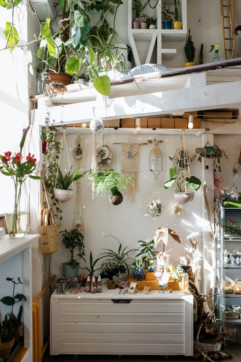 home interior with plants